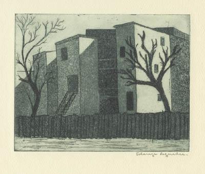 Solange LEGENDRE - Maisons cubiques